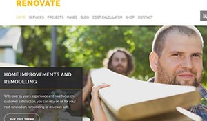 wp-themes-renovate